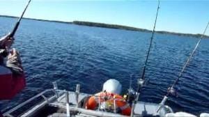 Рыбалка троллингом на реке или как увеличить улов до максимума?