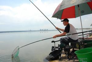 Особенности ловли на поплавочную удочку некоторых видов рыб: щуки, красноперки, сазана, хариуса, голавля, чехони, уклейки. Видео ловли голавля и красноперки
