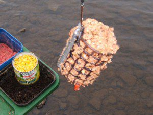 Ловля белой рыбы на фидер - Как ловить - Видео