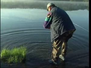 Ловля на фидер осенью разных видов рыб
