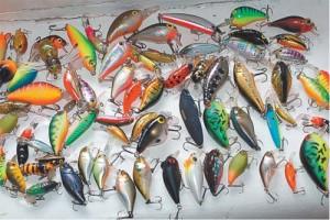Лучшие воблеры на голавля: что следует знать для качественной рыбной ловли?