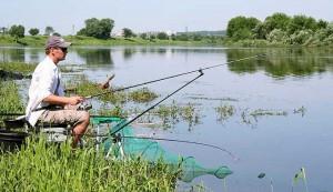 Как правильно ловить на фидер — полезные советы рыболовам