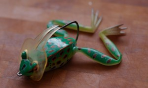 Ловля щуки на лягушку — оснастка, тактика поимки