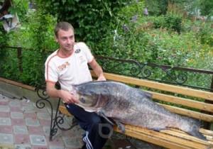 В Тернополе пойман толстолобик весом 37 килограмм