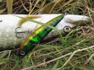 Ловля щуки на волкер — обзор проверенных приманок