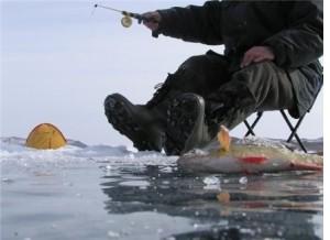 Ловля на подтяг — успешные советы рыболовам