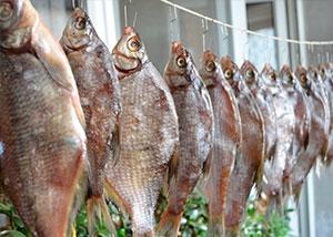 Вяление рыбы в домашних условиях