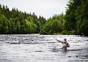 Рыбалка в Швеции