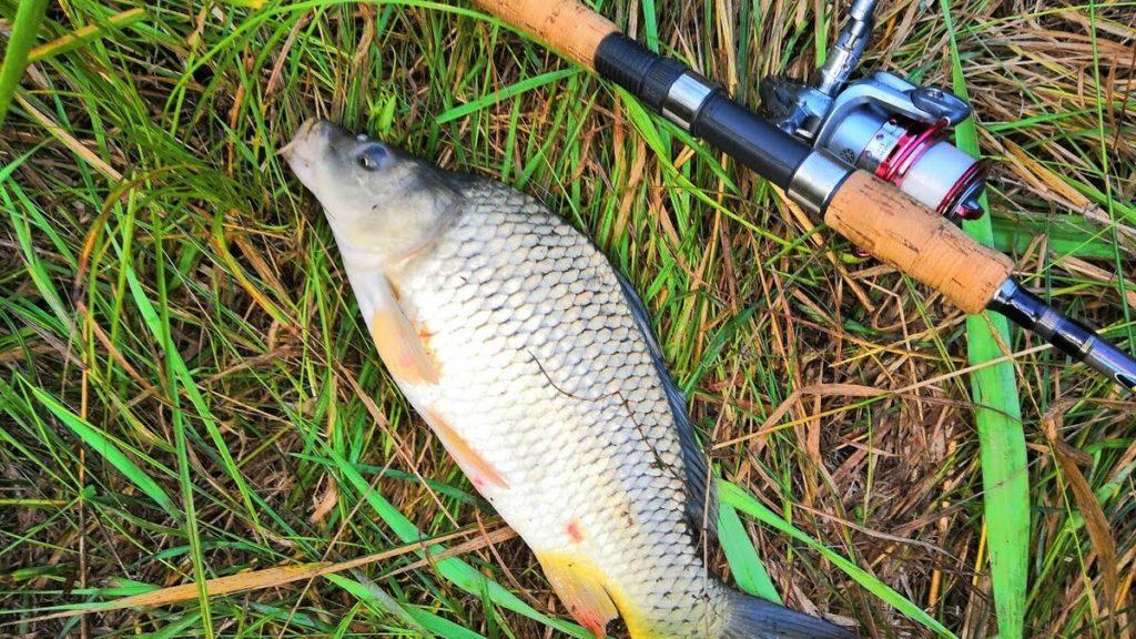 отправляясь на рыбалку